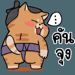 Kunjung Sumo Cat