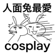 Rabbit and cosplay