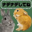 ウサギがいっぱい!メッセージスタンプ