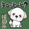 シーズー犬の福岡弁 41