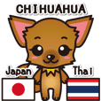 Chihuahuas Japanese & Thai sticker