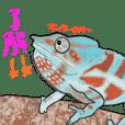 Chameleon park