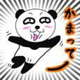 挑発的なパンダ