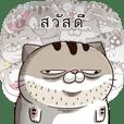 Ami-เขาเป็นแมวอ้วน 7