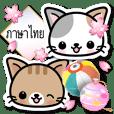 สไตล์ญี่ปุ่นแมว (ภาษาไทย)
