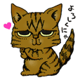 Toramaru&Hanako Cats
