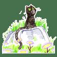OranGigi黑貓柳丁愛玩耍