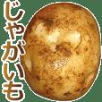 This is Potato 2