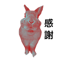 ウサギさんのシンプルスタンプ