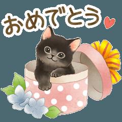 Cat sticker (Congratulation message)