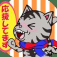 ねこ、ネコ、猫 その六 黒系シマねこ編