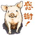 pig's life in traditional chinese