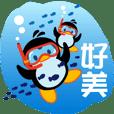 Little Penguin Gigi-Tour start