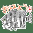 Various fish