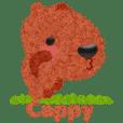 Cappy -JP-