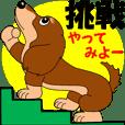 かわいいミニチュアダックス【熟語編】