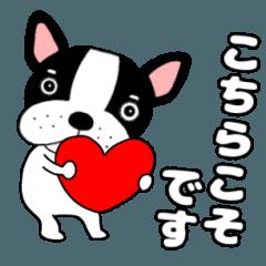French bulldog buruchan13