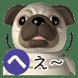 Innocent pug 3