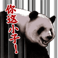 DOUBUTSU NAANI Sticker -for Taiwan-