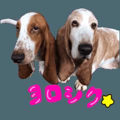 rui&mario's stamp