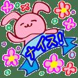 Pink rabbit Ravi