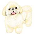 Shih Tzu Sticker !