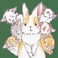 yuru fuwa rabbit life2