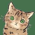 catcatcatcat Sticker