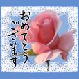 薔薇+白レース+手書きお祝い言葉