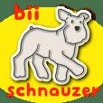 bii schnauzer - version 4