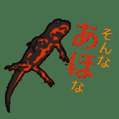 アカハライモリの関西弁スタンプ