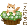 Cat sticker (Message for friends) 2