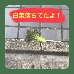 Nakajimayonnaise_lost ver.01