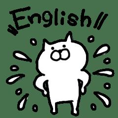 Talk cat. English!