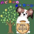 パピヨン犬のメッセージ