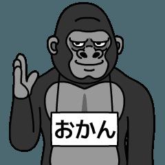 okan is gorilla