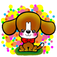 beagle dogs pochi
