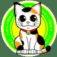 This Mi-ke cat name is korosuke.