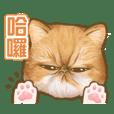 Kai & Una_20200603230356