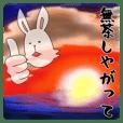 funny rabbit funny