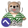 Funny shiba-inu 3