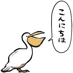 talking pelican