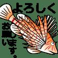 水中生物ダジャレ集03