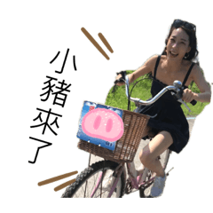 小豬is coming