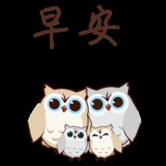 頑皮貓頭鷹5【中文版】