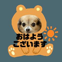 kazumi_20200606123304