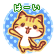 "Cute cat friends ""Tora-san"""