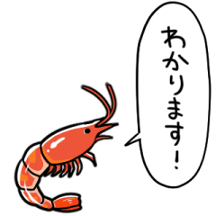 shrimp that speaks in honorific