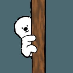 Maybe White Dog 2