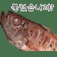 Rosy seabass Korean version